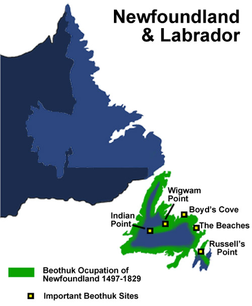 the native peoples of newfoundland Aboriginal peoples the province of newfoundland and labrador today is home to four peoples of aboriginal ancestry: the inuit, the innu, the mi'kmaq and the southern inuit of nunatukavut (formerly the labrador inuit-metis.