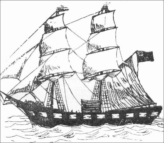 Brigs were a type of sailing vessel used in the seal fishery in the 1800s.