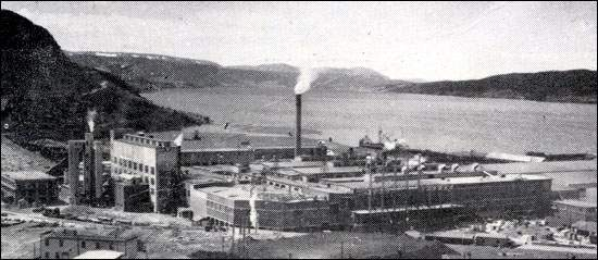 The opening of the Corner Brook pulp and paper mill was a result of the Humber deal.