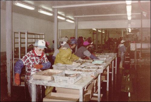 Economic Impacts of the Cod Moratorium