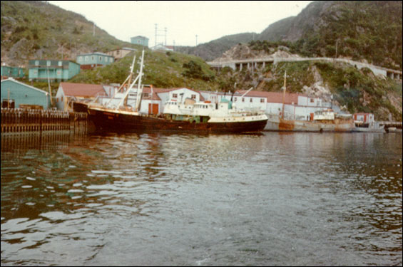Plants processing fresh-frozen cod were beginning to replace the salt fish industry by the 1970s.