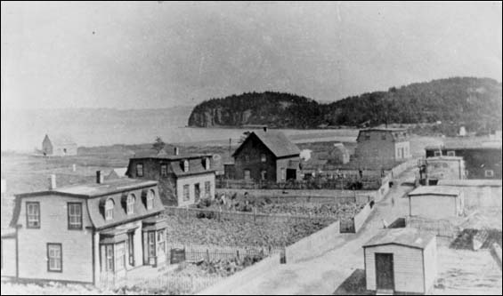 Haystack, Placentia Bay. Gardens were important to the household economy.