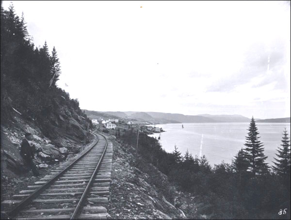 Construction of the Newfoundland railway opened up island's interior and made it easier for government and business officials to exploit the region's natural resources.