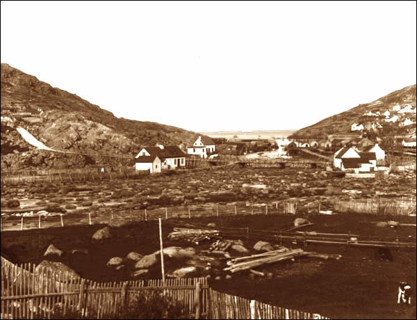 A view of houses and gardens at Petty Harbour.