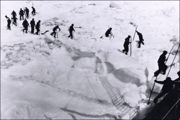 Sealers spent up to 12 consecutive hours on the ice, often walking long distances across unstable ice pans.