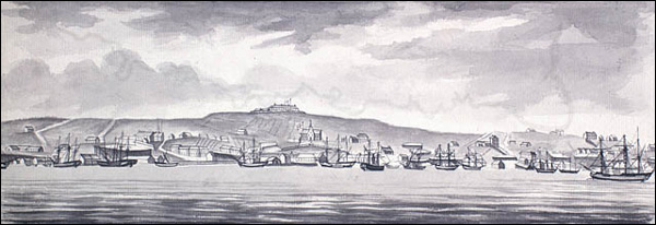 """A View of St. John's and Fort Townsend."""