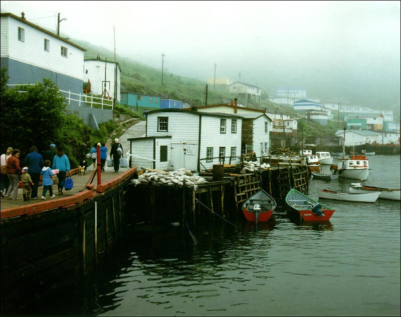 A small community located on the south coast of Newfoundland.