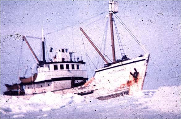 A small Newfoundland and Labrador owned motor vessel hunting for seals in 1972.