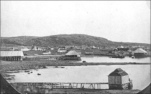 A panoramic view of a fishing station on the French Shore.