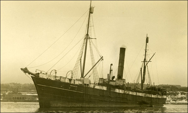 The wooden sealing vessel SS Newfoundland left St. John's for the North Atlantic ice floes in March 1914.