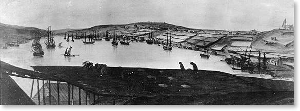 Photo from a painting which was owned by the late former premier J. R. Smallwood. It shows fish flakes in foreground and St. John's in background.
