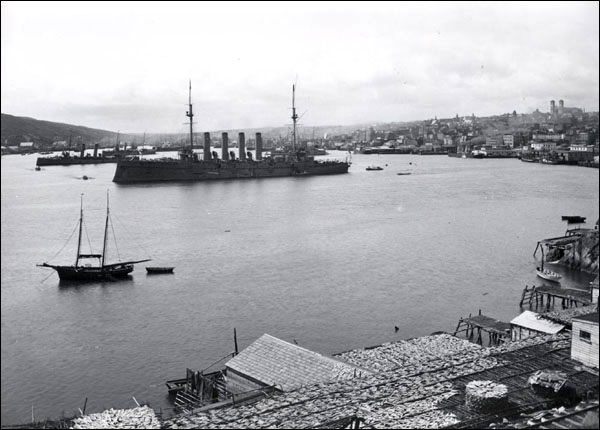 The Spanish influenza reached Newfoundland on 30 September 1918 when a steamer carrying three infected crewmen docked at St. John's harbour.