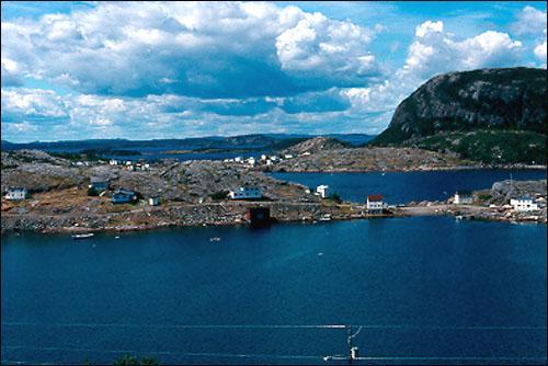 View of Bishop's Harbour, Salvage.