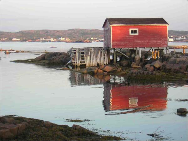 Like many Newfoundland and Labrador fishing communities, Fogo experienced dramatic population loss after the 1992 cod moratorium. Its population dropped from 1,030 in 1991 to 748 in 2006.