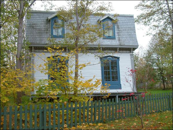 Forest House St John S Nl