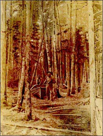 1888 ROYAL GEOGRAPHICAL SOCIETY VOL X 20 MAPS CHINA BORNEO SIAM PEKING BURMA