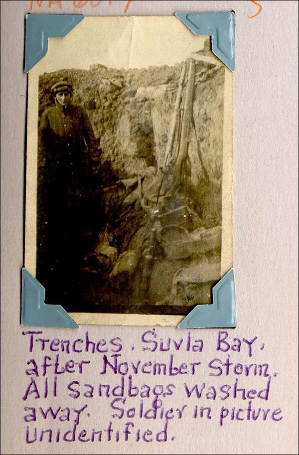 The Newfoundland Regiment At Gallipoli