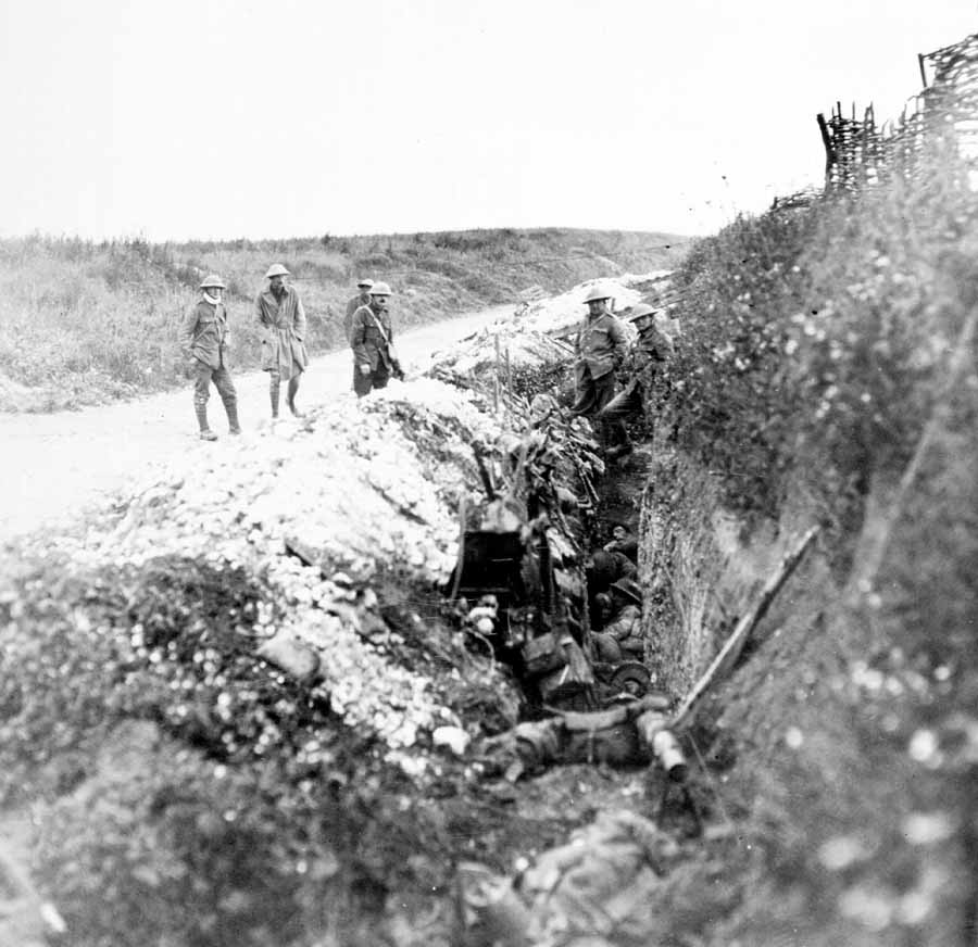 The Somme Royal Newfoundland Regiment In The First World War